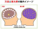 脳内万平1.jpg